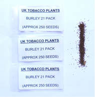 BURLEY 21 SEED PACKS